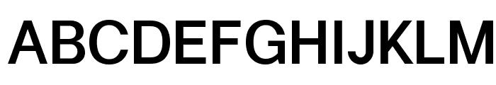 Kalypsa Medium Font UPPERCASE