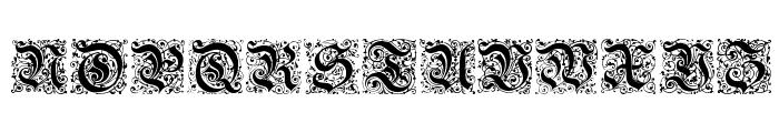 Kanzlei-Initialen Font LOWERCASE