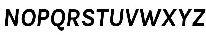 Karla Bold Italic Font UPPERCASE