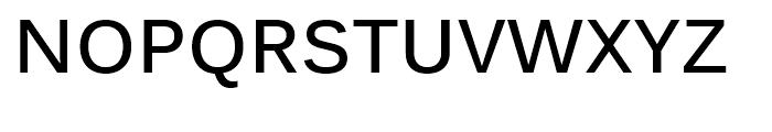 Kalinga Bold Font UPPERCASE