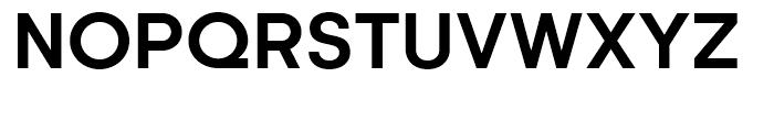 Kamerik 105 Cyrillic Bold Font UPPERCASE