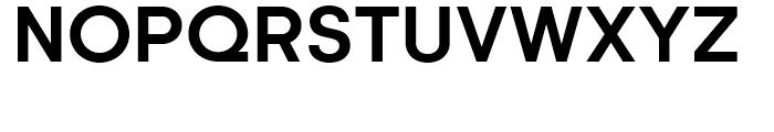Kamerik 205 Bold Font UPPERCASE