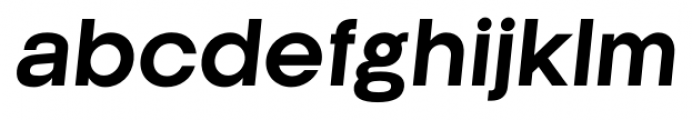 Kamerik 205 Bold Oblique Font LOWERCASE