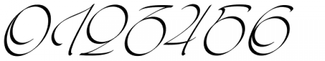 Kaligrafia Galana Alt Font OTHER CHARS