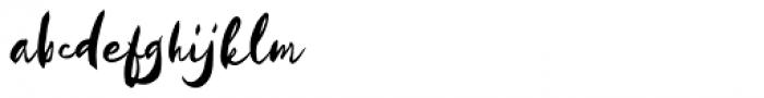 Kayto Script Pro Regular Font LOWERCASE