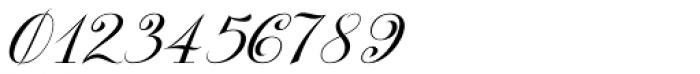 Kazincbarcika Script Font OTHER CHARS