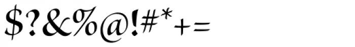 Kazuraki SP2N Font OTHER CHARS