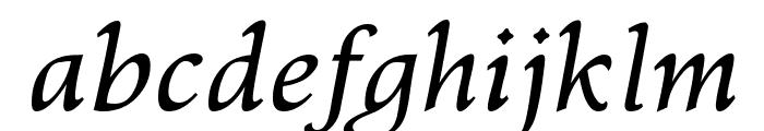 Kelvinch Italic Font LOWERCASE