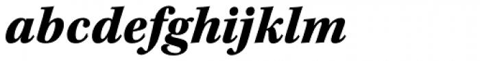 Kepler Std Caption SemiCond Black Italic Font LOWERCASE