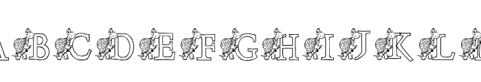 KG TURTLE Font UPPERCASE