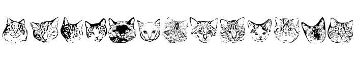 KittyPrint AOE Font LOWERCASE