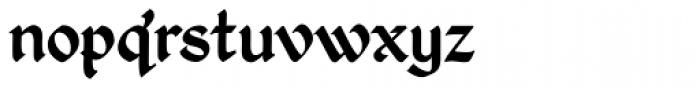 Kingthings Petrock Pro Font LOWERCASE