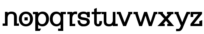 KleinSlabserif-Bold Font LOWERCASE