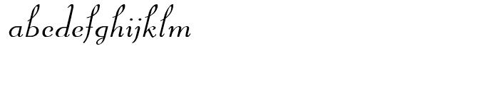 Kleukens NF Kursiv Font LOWERCASE