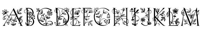 Koch Altschrift Initialen Font UPPERCASE