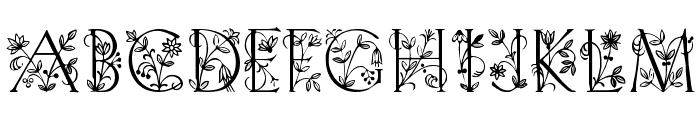 Koch Initialen Font UPPERCASE