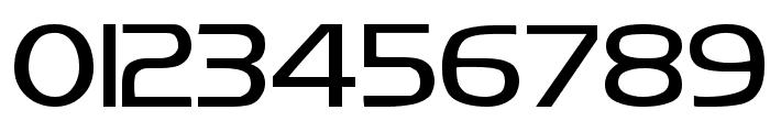 Koshgarian Regular Font OTHER CHARS