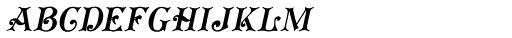 Koster Plain Caps Oblique Font LOWERCASE