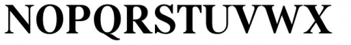 Kostic Serif Bold Font UPPERCASE