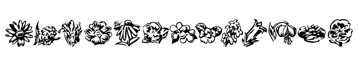 KR Beautiful Flowers 2 Font UPPERCASE