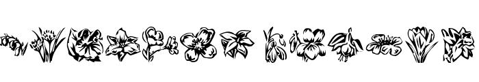 KR Beautiful Flowers 2 Font LOWERCASE