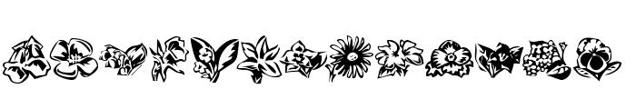KR Beautiful Flowers 3 Font UPPERCASE