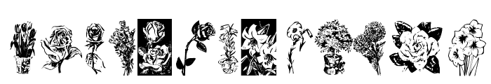 KR Beautiful Flowers Font LOWERCASE