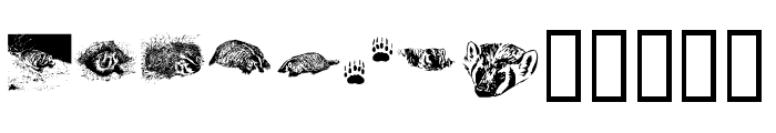 KR Crystal's Badgers Font LOWERCASE