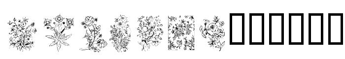 KR Floral Color Me Font LOWERCASE