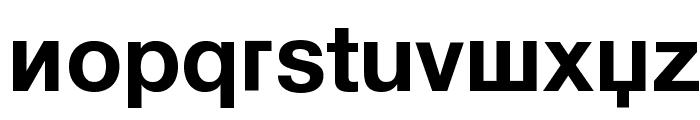 KyrillaSansSerif-Bold Font LOWERCASE