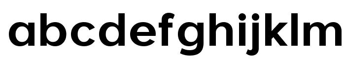 Larke Neue Bold Font LOWERCASE