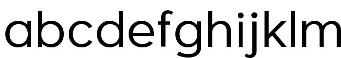 Larke Neue Regular Font LOWERCASE