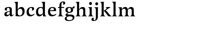 Latienne Swash Medium Font LOWERCASE