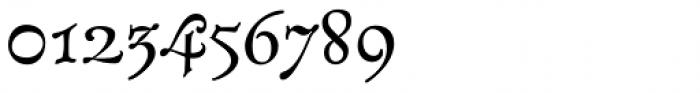 Lagarto Roman Font OTHER CHARS