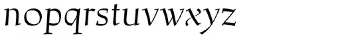 Lapis Pro Italic Font LOWERCASE