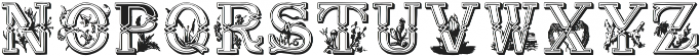 LettrinesPetinOrnee ttf (400) Font LOWERCASE