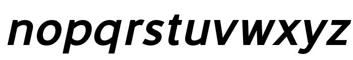 LearnShareColaborate-BoldItalic Font LOWERCASE
