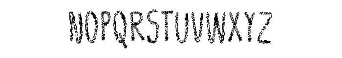 Leather Font Regular Font UPPERCASE