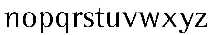 Leftist Mono Serif Font LOWERCASE