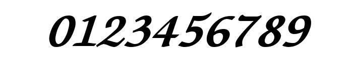 Lekhana Bold Italic Font OTHER CHARS