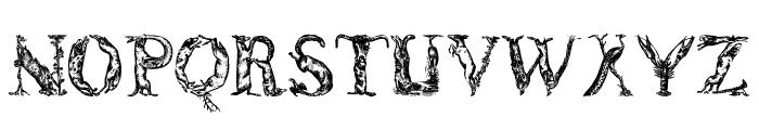 LettersAnimales Font LOWERCASE