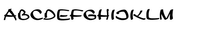 Leger Standard D Font LOWERCASE