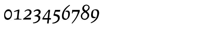 Leipziger Antiqua Italic Font OTHER CHARS