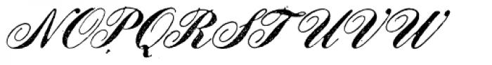Le Script Regular Font UPPERCASE
