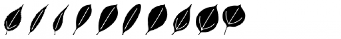 Leaf Assortment Font OTHER CHARS