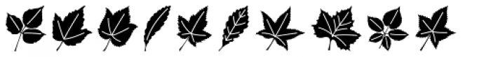 Leaf Assortment Font UPPERCASE