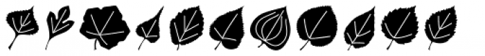 Leaf Assortment Font LOWERCASE