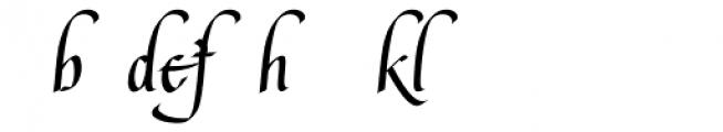 Lee Ann Alternates Font LOWERCASE