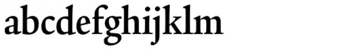 Legacy Serif Std Bold Condensed Font LOWERCASE