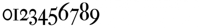 Leibniz Fraktur Pro Font OTHER CHARS